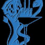 Journée des 75 ans de la Société de Médecin et Santé au Travail de Lyon